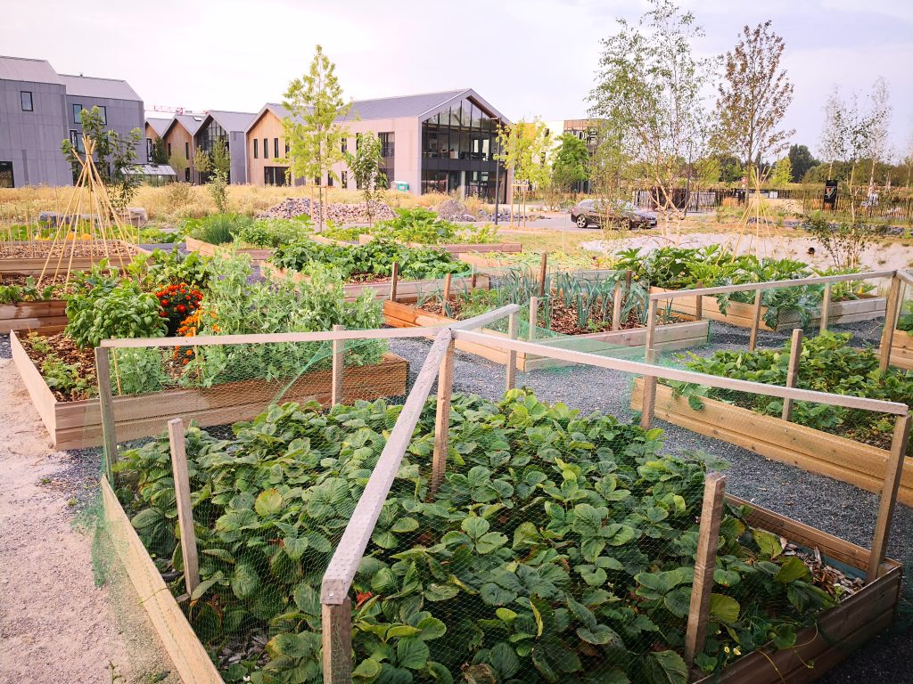 Arteparc Lille - parc tertiaire proposant de agriculture urbaine